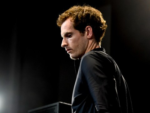 Andy Murray reacts to reaching first ATP final in two years