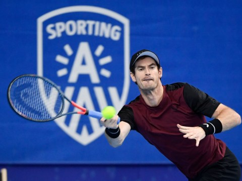 Andy Murray beats Stan Wawrinka in Antwerp to win first ATP singles final in over two years