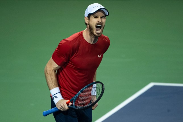 Andy Murray roars during his defeat to Fabio Fognini at the Shanghai Masters