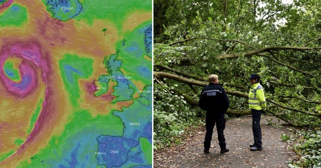Storm Lorenzo and a fallen down tree in Stafford Cemetery