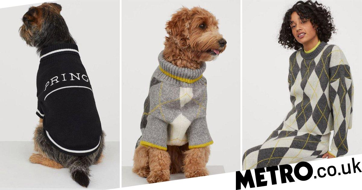 H&M is selling matching winter jumpers for dogs and their owners