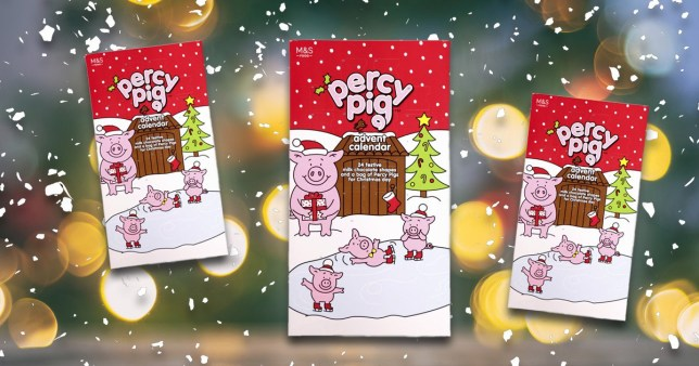 The Marks & Spencer Percy Pigs advent calendar on a festive background