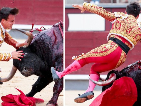 Bullfighter 'gravely ill' after being gored in groin for second time