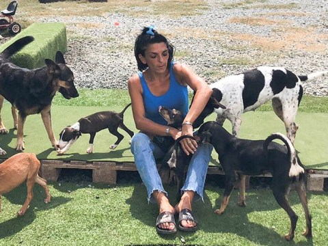 Mum spends £40,000 of life savings to rescue stray dogs in Cyprus