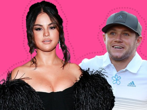 Niall Horan knows people want him to date Selena Gomez