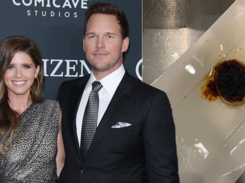 Chris Pratt trolls wife Katherine Schwarzenegger's cooking skills after her epic fail at microwaving a bagel