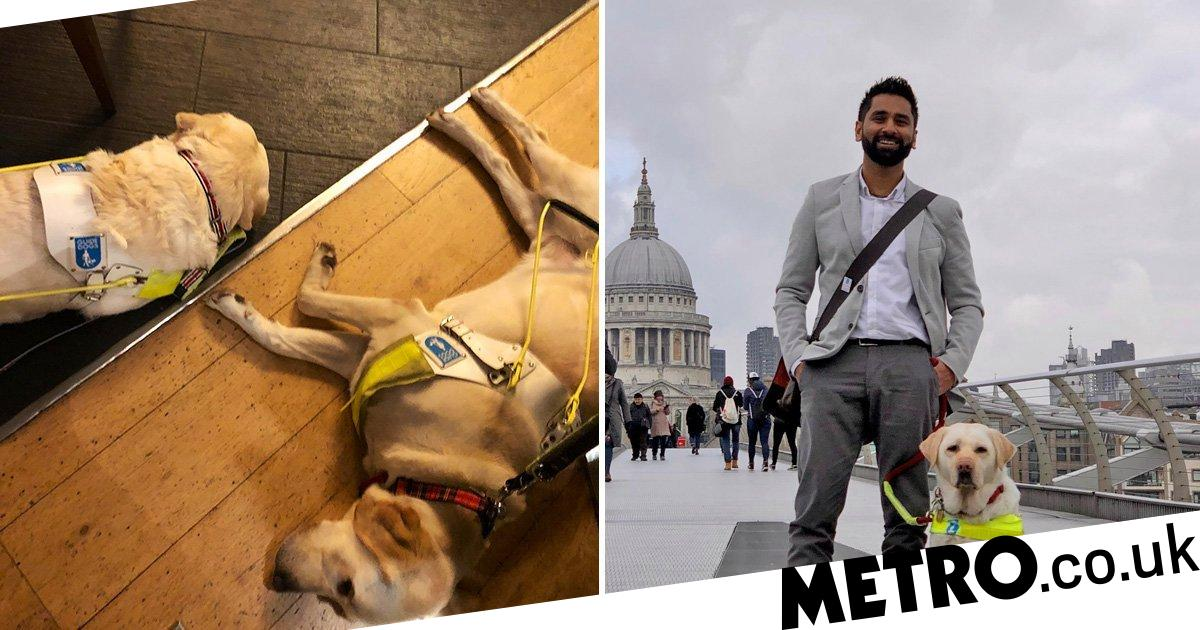 Blind man targeted by woman who claims using guide dogs is as cruel as cock-fighting