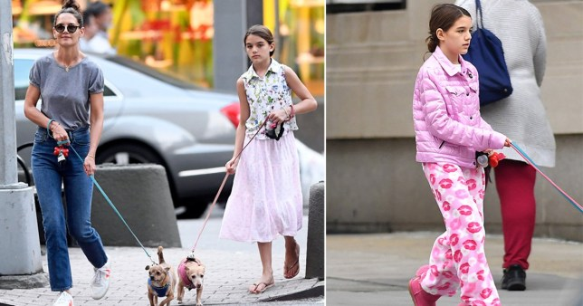 Suri Cruise takes dog-owning responsibilities very seriously on walkies with pet pooches in New York