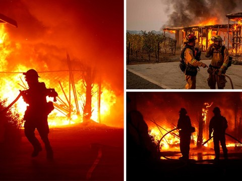 State of emergency declared as California wildfires ravage homes