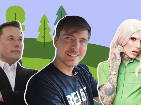 MrBeast's TeamTrees flies past $10 million in a week with support from Elon Musk, Jeffree Star and JackSepticEye