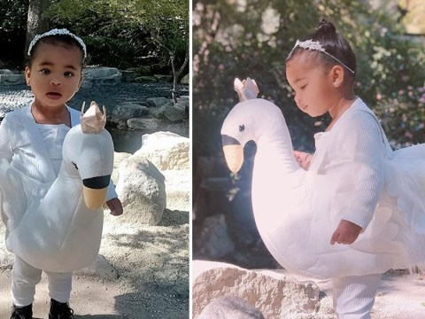 True Thompson is the cutest little swan for Halloween and Khloe Kardashian promises even more looks