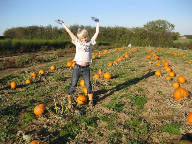 COLLECT - James Maxey, aged 13, of Maxey's Farm Shop, Newark, when he first started growing pumpkins but has now grown his business into one of the UK's largest pumpkin patches. See SWNS story SWMDpumpkins. James Maxey was 13 when he planted a pumpkin patch at his parents' farm near Kirklington in Nottinghamshire. He initially sold pumpkins to friends and family, but seven years later the farm is now one of the biggest pick-your-own pumpkin patches in the UK.