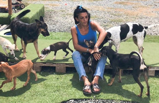 PIC BY CATERS NEWS (PICTURED: Dimitra Andreou, 37, playing with dogs, Larnaca, Cyprus. ) -A mum-of-two has spent over ?40K of her life savings to save stray dogs abroad - and has even set up her own rescue centre. Dimitra Andreou, 37, quit her job and moved to Larnaca, Cyprus, to set up a new life with her family but never thought she would end up with fostering dozens of four-legged friends from the streets.Yet the former assistant bank manager couldnt bear the thought of leaving the dogs to die of starvation so after years of fostering strays she opened her own rescue shelter last year. The shelter relies on donations but there is never enough' meaning Dimitra has had to fork out ?40,000 of her life savings to cover the costs of the shelter, veterinary bills and food for the dogs.- SEE CATERS COPY