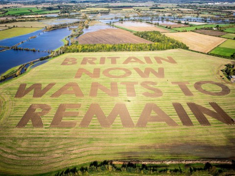 Huge anti-Brexit message ploughed into field by campaign group