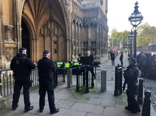 Man pinned down by police in Parliament grounds as MPs debate Brexit