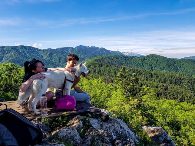 Couple petting a dog on top of a mountain
