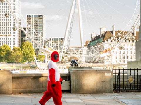 There's a man dressed as a gorilla walking round London all week