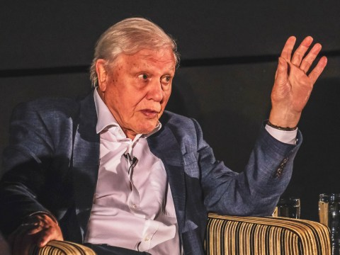 David Attenborough is hopeful new series Seven Worlds, One Planet will 'build on unstoppable' climate change movement