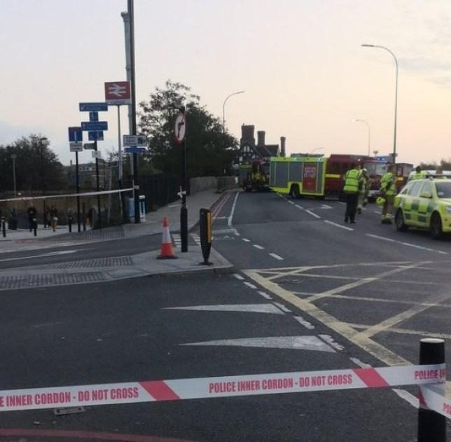 Cyclist killed Catford