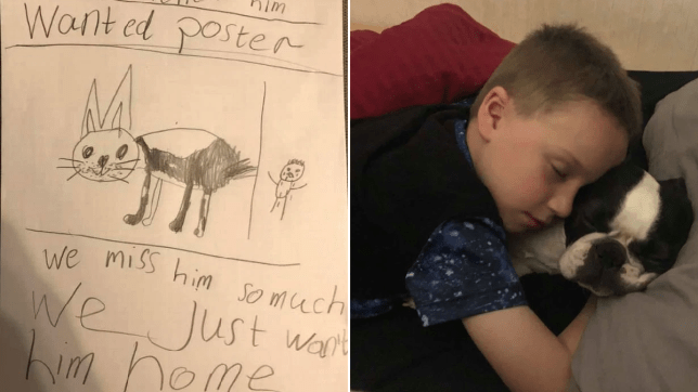 A heartbroken little boy has made his own 'wanted' poster after a thief stole his sick family dog.