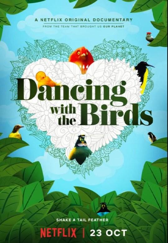Netflix's Dancing With The Birds