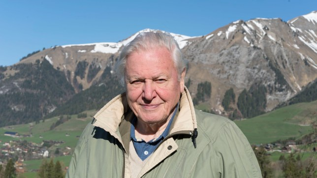 Television programme: Planet Earth II, picture shows - Broadcaster Sir David Attenborough. (C) Ruth Peacey - Photographer: Ruth Peacey
