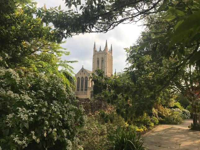 Bury St Edmunds Main Pic - St Edmundsbury Cathedral from the Abbey Gardens (Picture - Yvette Caster) -7f12