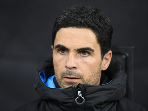 Arsenal players tell board not to appoint Mikel Arteta and demand Carlo Ancelotti instead