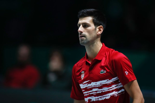 Novak Djokovic looks on during his Davis Cup match for Serbia