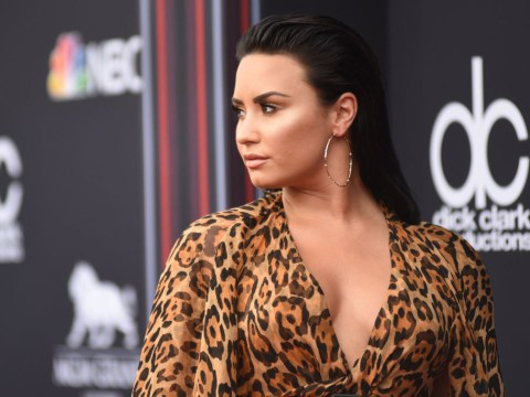 Demi Lovato is 'extremely sensitive' to online trolls who pick on her insecurities