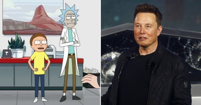Elon Musk makes random cameo in Rick and Morty