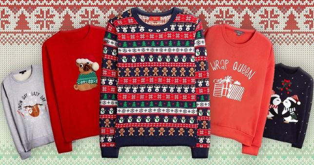Primark festive animal jumpers