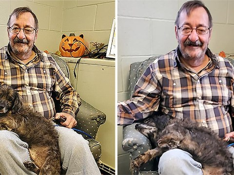 Man pictured smiling after sick, elderly dog he adopted cuddles up and falls asleep on him