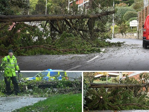 Dangerous 100mph winds to ease after woman died being hit by falling tree