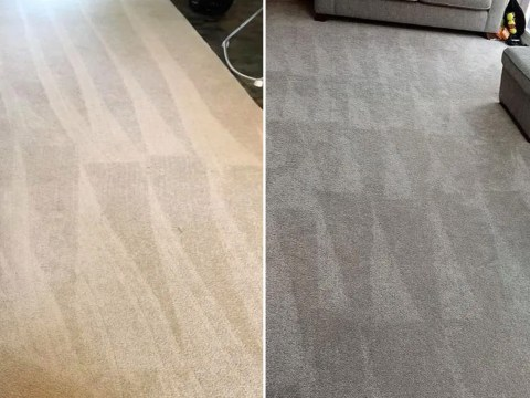 Cleanfluencers are debating whether you should leave lines on your carpet when vacuuming