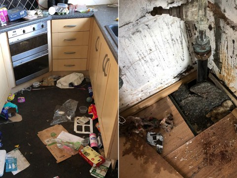 Landlord faces £30,000 bill after tenants left property in revolting mess