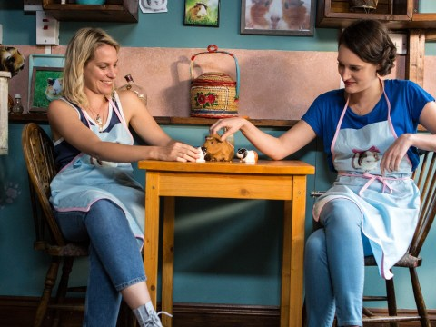 Replica of Fleabag's guinea pig cafe opens in London and it's everything we needed