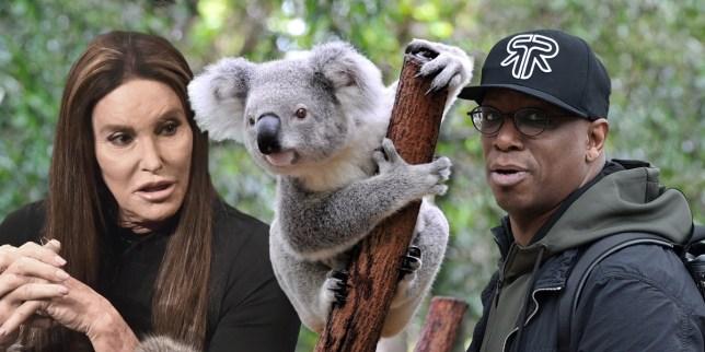 Caitlyn Jenner Ian Wright Koala I'm a Celeb