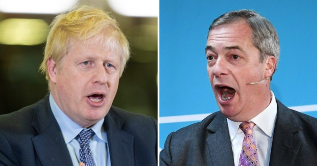 The Conservatives have denied offering Nigel Farage an election pact to withdraw more candidates (Picture: EPA)