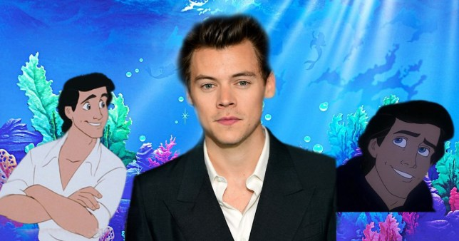 Harry styles and Prince Eric