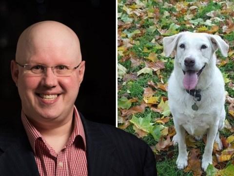 Matt Lucas reveals death of beloved dog in heartbreaking tribute: 'Now the house is silent'