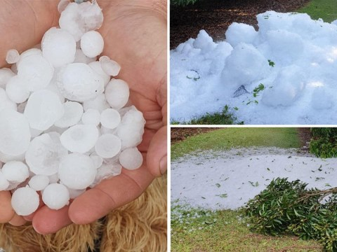 'Catastrophic' hail storm his Australia with stones 'the size of cricket balls'