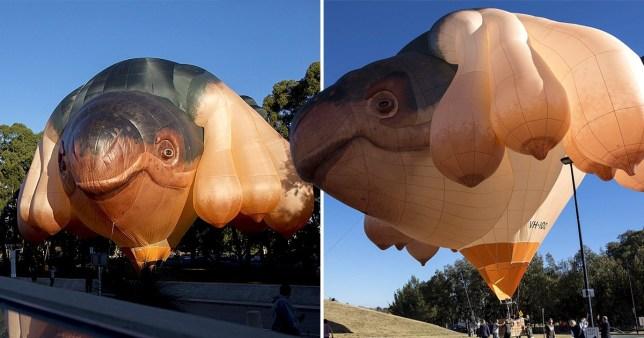Skywhale hot air balloon