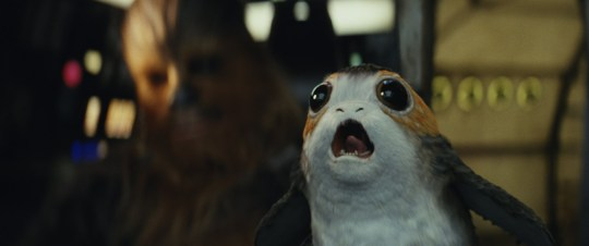 Daisy Ridley admits Baby Yoda is way cuter than the Porgs (Picture: Lucasfilms/Disney)