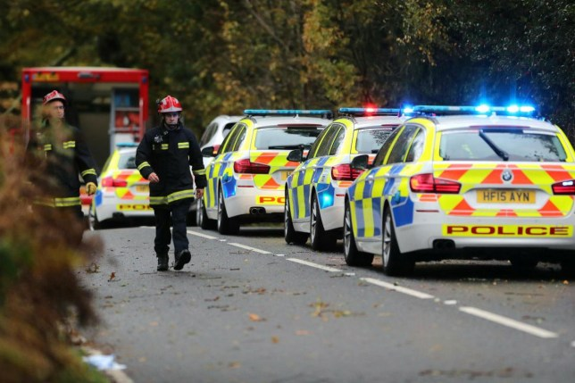 (Picture: Daily Echo/BNPS) A woman has sadly died following a road traffic collision in East Dorset. Dorset Police was called at 8.41am on Saturday 2 November 2019 to a report of a collision involving a grey Ford B-max and a tree on Verwood Road between the Alderholt turning and the A31. It is reported that the tree had fallen on the car. Very sadly the driver of the Ford, a local woman aged in her 60s, was pronounced dead at the scene. Her next of kin has been informed.
