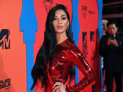 Nicole Scherzinger says she 'massively' struggled with The Pussycat Doll's sexy image in girlband's early days