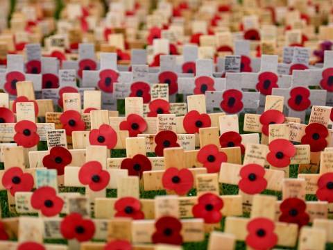 Is Remembrance Day for WW1 or WW2 and why are poppies used to commemorate war?
