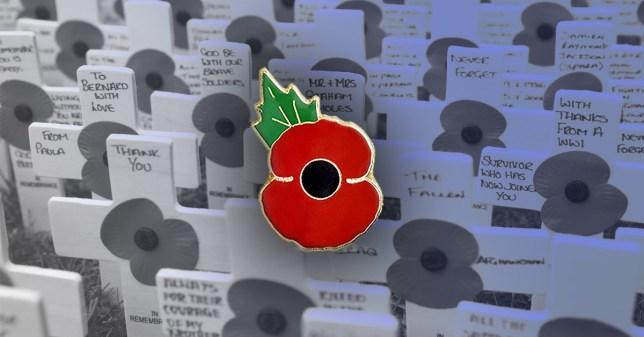 metal poppy pin badge