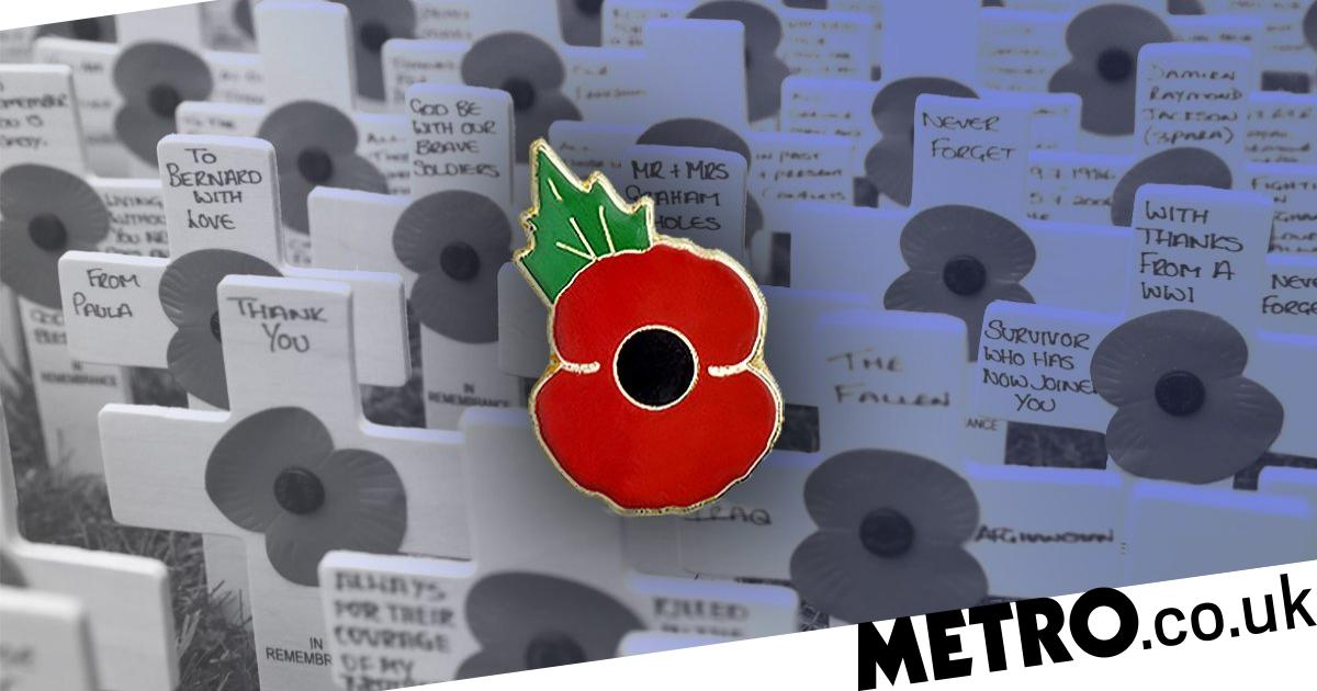 POPPY PIN BADGE /'2019/'
