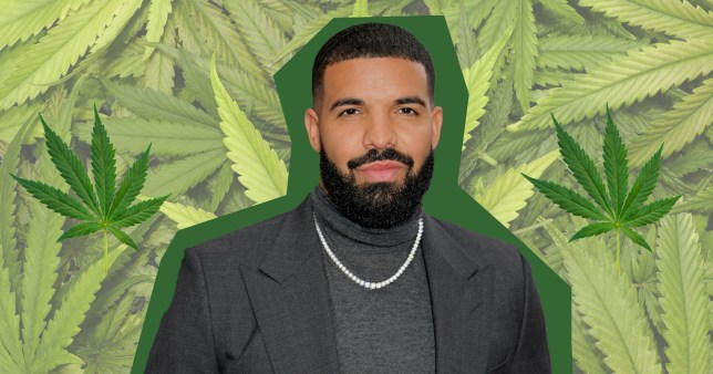 Image result for drake weed